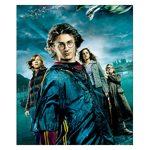 Harry Potter. Размер: 25 х 30 см